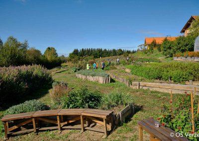 ND - Ekološko kmetovanje - OŠ Veržej 34
